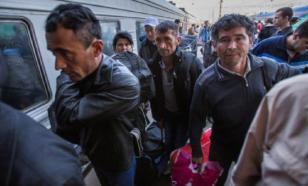 В Подмосковье задержали 50 нелегальных мигрантов