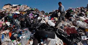 """Если """"зеленые"""" наберут миллион подписей, россиян могут обязать сортировать мусор"""