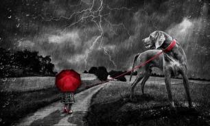 Есть ли у животных чутье на природные бедствия?