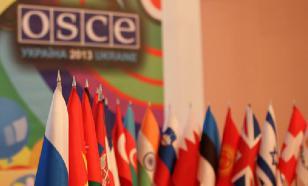 ОБСЕ прозрела: Украина давит свободу слова