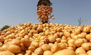Компания PepsiCo будет судиться с фермерами, продававшими картофель для Lay's