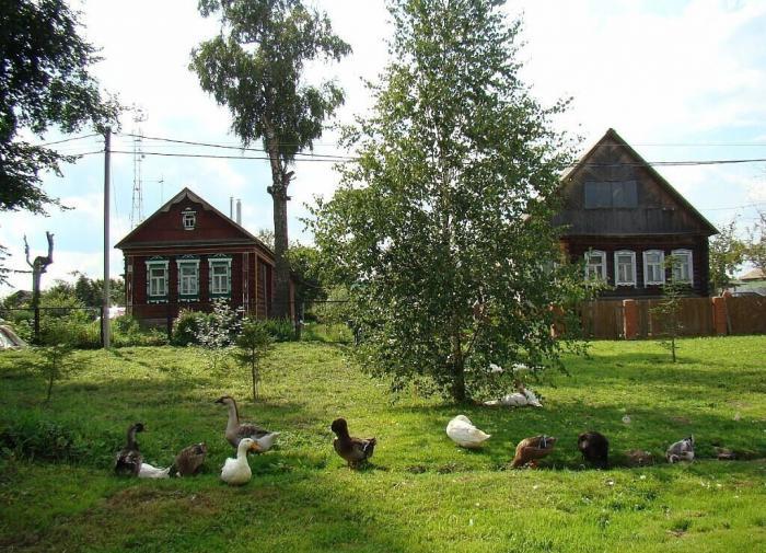 В Иркутской области появится сельский туризм повышенной комфортности
