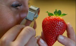 Кто ответит за опасную еду?— Прямой эфир Pravda.Ru