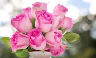 Аромат роз улучшает сон и повышает эффективность обучения