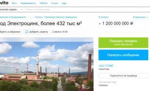 """На """"Авито"""" продается один из российских заводов"""