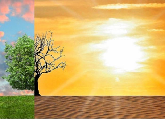 Ученые точно не знают, идет ли потепление климата или похолодание