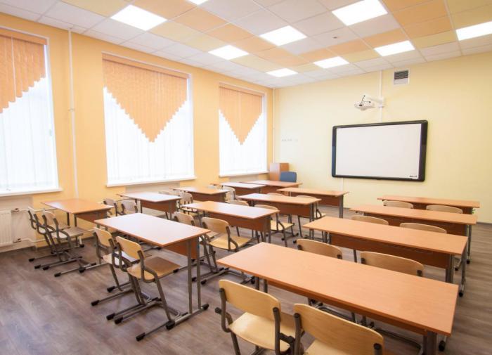 В Минпросвещения назвали долю закрытых из-за COVID-19 школ