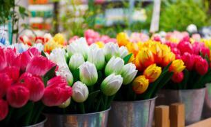 Россияне стали меньше тратить на цветы для учителей