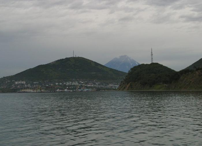 СК РФ: в экологической катастрофе на Камчатке виновата природа