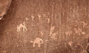 В тропических лесах Амазонии обнаружили коллекцию наскальной живописи