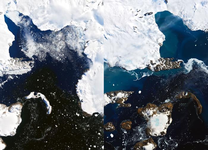 С поверхности Антарктиды исчезли два больших ледника