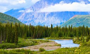 """""""Все свое неси с собой"""": туристам на Аляске запретят ходить в туалет на природе"""