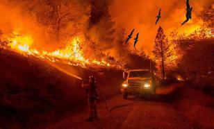 Загоревшийся склад со шпалами в Оренбурге потушили