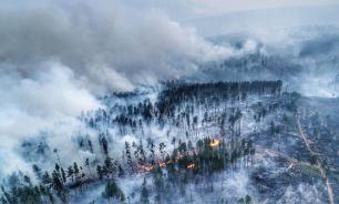 Медведев поручил проверить версию о поджогах леса в Сибири