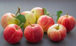 Шесть способов хранения яблок
