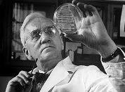 Курьезы науки: грязнуля победил микробов