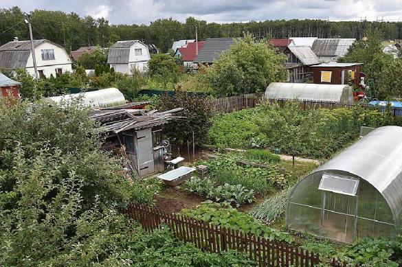 Эксперт: ситуация сложная, но сельское хозяйство выживет