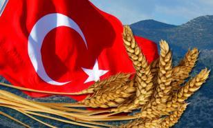 Договорились: Турция сняла ограничения на российское зерно