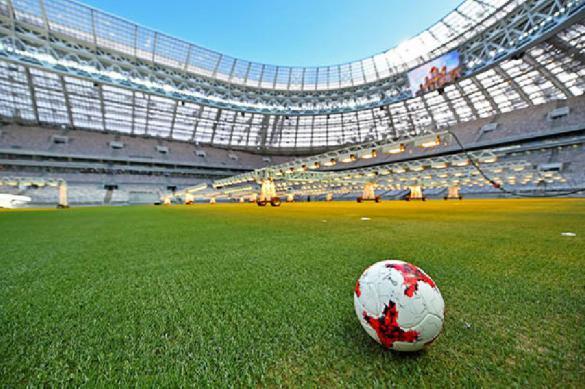 Чемпионат России по футболу может быть остановлен на две недели