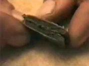 У столичных гаишников нашли гашиш и марихуану