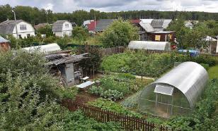 Андрей Туманов: садоводы живут вне правового поля
