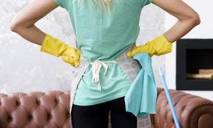Госдума рассмотрит законопроект о пособиях для домохозяек