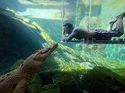 Отдых... в пасти крокодила