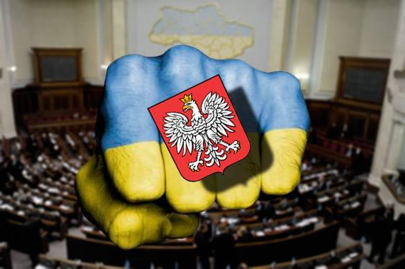 Польша предостерегла Киев от принятия ответного постановления о геноциде
