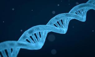 Дело в гормонах: ученые выявили причину обжорства
