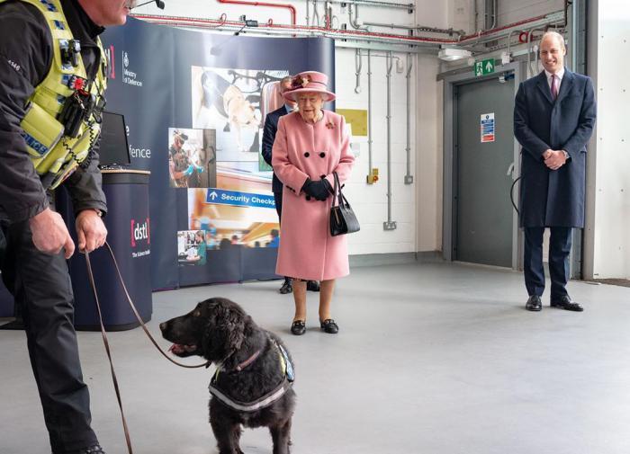 """Королева Елизавета встретилась с учёными, изучающими действие """"Новичка"""""""