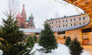 """В столичный парк """"Зарядье"""" привезли снег"""