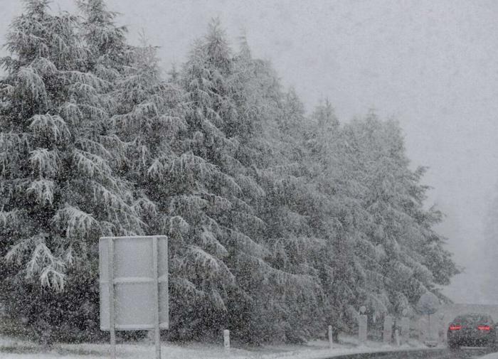 Швейцарские Альпы и часть Германии завалило снегом