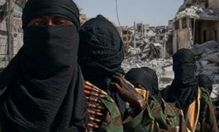 Россия, Иран и Турция обеспокоены присутствием боевиков в Идлибе