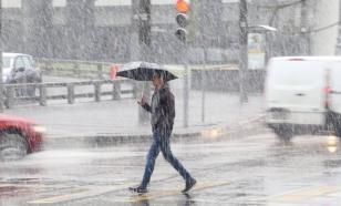 В Москве прошёл мокрый снег с дождём