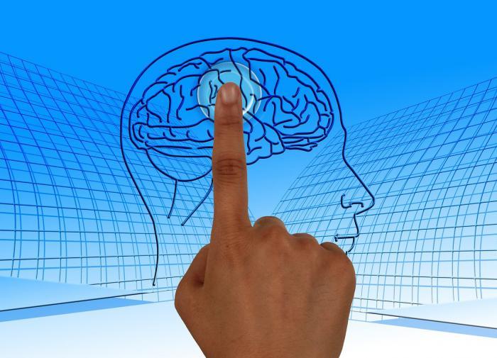 Человеческий мозг способен воспринимать мир в 11 измерениях