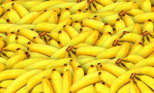 Человечество рискует остаться без бананов