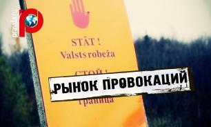 """Рынок """"русофобии"""": Президент Литвы провоцирует Россию по заказу"""