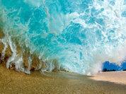 Жизнь на дне океана гораздо веселее