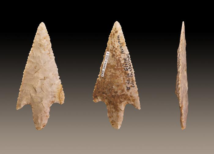 В Танзании найдены рубила, сделанные ещё до появления Homo sapiens