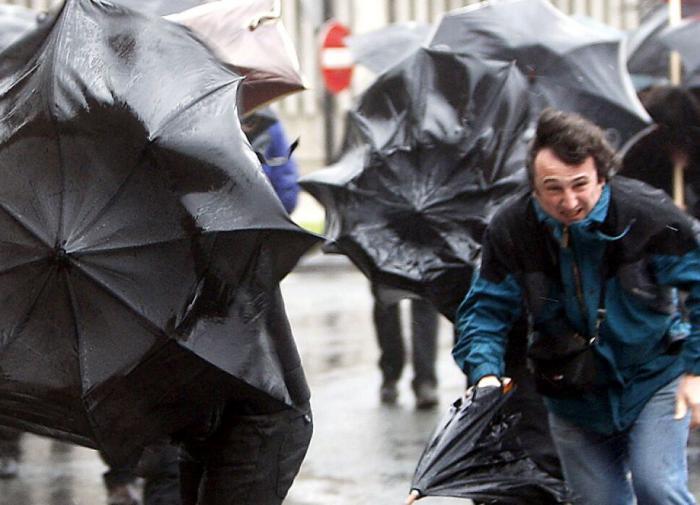 Спасатели предупреждают москвичей об опасном ветре