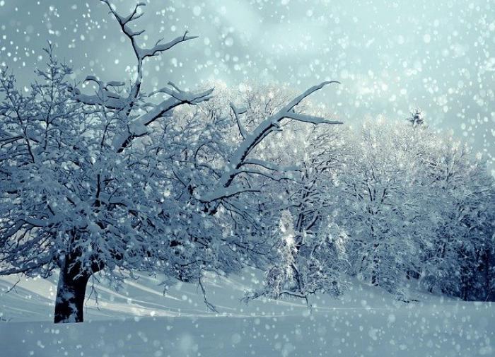 """Циклон """"Квирин"""" принёс в Петербург сильный снегопад"""