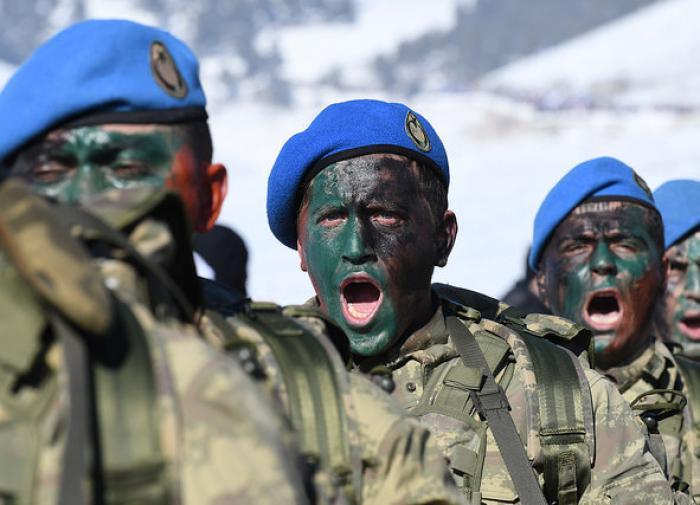 Тюркская армия - ложная тревога?