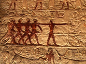 Первыми вегетарианцами были древние египтяне