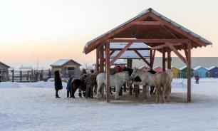 """Туркомплекс """"Сибирское подворье"""" превратится в ферму"""