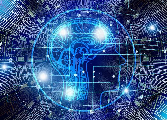 Эксперты перечислили внешние признаки высокого интеллекта