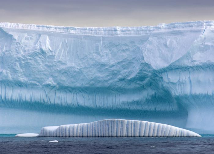 """От берегов Антарктиды откололся новый """"самый большой в мире"""" айсберг"""