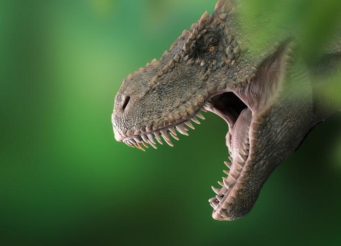 Палеонтологи обнаружили в кости динозавра древних паразитов