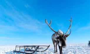 Ямал: мифы и реальность северных кочевников