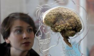 Нервные клетки восстанавливаются!
