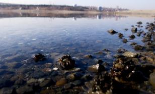 Неизвестные слили в реку Уфу нефтепродукты